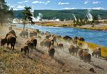Hôtel West Yellowstone - 1872 Inn - Adults Exclusive-4