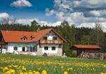 Location vacances Bad Brambach - Penzion Restaurace Na Výhledech-2