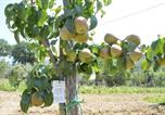 Location vacances Sant'Anatolia di Narco - Agriturismo Da Pietro E Pina-4