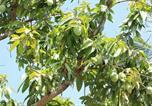 Location vacances Pursat - Mother Garden Homestay-4