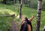 Location vacances Idaho Falls - Granite Creek Ranch Cabin #2-4