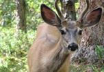 Location vacances Jasper - Doe A Deer Accommodation-3