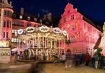 Hôtel Ensisheim - Hôtel Résidence au Vieux Marronnier Mulhouse Baldersheim-2