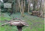 Location vacances Plogoff - Au Jardin de la Nymphe Bleue-2