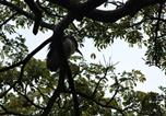 Location vacances Negombo - Serendib Villa-1
