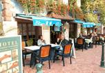 Hôtel Kaysersberg - Hotel Restaurant Hassenforder-3