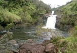 Location vacances Hilo - Five Bedroom House at Buddha's Cup Retreat at Leleka'ae Falls-3