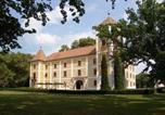 Hôtel Darnózseli - Hedervary Castle-1