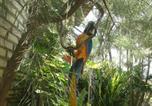 Location vacances Tibau do Sul - Pousada Tibau Paradise-2