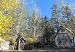 Hôtel Big Bear Lake - Castle Wood Theme Cottages- Couples Only-4