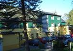 Hôtel Seiffen/Erzgebirge - Ferienhotel Goldhübel-4