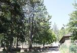Camping Villefranche-de-Panat - Domaine L'Ecrin Vert-1