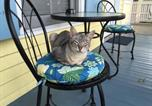 Location vacances Key West - Angelina Guesthouse (Adults only)-3