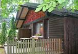 Location vacances La Bresse - Holiday Home Le Planot-1
