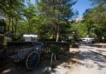 Camping  Acceptant les animaux Bouches-du-Rhône - Camping La Vallée Heureuse-4