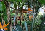 Location vacances Giens - Tropique-4