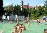 Location vacances Vyhne - Chata pri kúpalisku-4