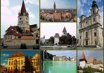 Location vacances Sibiu - Apartament La Paltinul-4