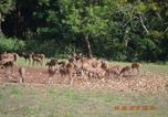 Location vacances Gudalur - Whistling Wood Estate-2