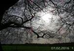 Location vacances Winchester - Bottom Pond Shepherd Hut-3