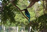 Location vacances Kataragama - Shangri-Lanka Village-3