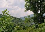 Location vacances Gatlinburg - Love Nest #334 Holiday home-2