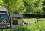 Camping avec WIFI La Chapelle-Aubareil - Camping La Castillonderie-2
