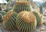 Hôtel Favara - Relais Garden Cactus B&B-1