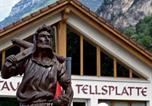 Hôtel Seelisberg - Hotel Tellsplatte-2