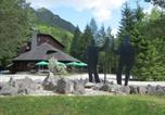 Hôtel Stahovica - Dom Planincev, Logarska Dolina-3