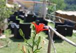 Location vacances Tramonti - Agriturismo da Regina-4