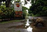 Hôtel Dominical - Rafiki Beach Camp-4