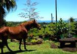 Location vacances Hilo - Hilltop Legacy Vacation Rental-1