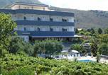 Hôtel Praia a Mare - New Hotel Blu Eden-3
