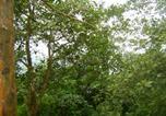 Villages vacances Kozhikode - Orchard Holiday Resort-1