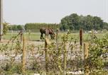 Location vacances Torhout - Ter Hoge Zee-4