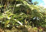 Location vacances Calibishie - Roots Jungle Retreat-4