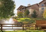 Location vacances Sevierville - Collier Drive Condo #228814-2