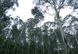 Location vacances Fentonbury - Huon Valley Eco Wilderness Retreat-3