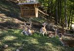 Villages vacances Podčetrtek - Eco Resort Beneath Velika Planina-4