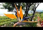 Location vacances El Sauzal - Villa La Florida-2