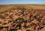 Location vacances Jaisalmer - Javand Royal Desert Safari-4