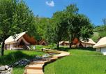 Camping avec Spa & balnéo Slovénie - Château Ramsak-1