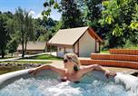 Camping avec WIFI Slovénie - Château Ramsak-2