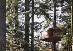Location vacances Le Tholy - Cabanes dans les Arbres &quote;Nids des Vosges&quote;-1