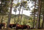 Location vacances Sant Pere Sallavinera - Les Corts de Biosca-2