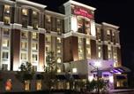 Hôtel Maumee - Hilton Garden Inn Toledo / Perrysburg-1