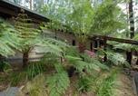 Location vacances Croydon - Fernglen Forest Retreat-4