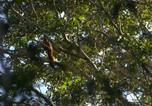 Villages vacances Tulum - Quintana Roo National Park Campground & Hiking-1