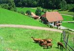 Location vacances Haslach im Kinzigtal - Apartment Salmensbach 1-3